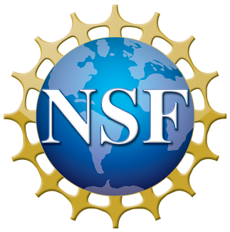 ROML linguists awarded NSF grant